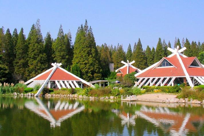 东平森林公园