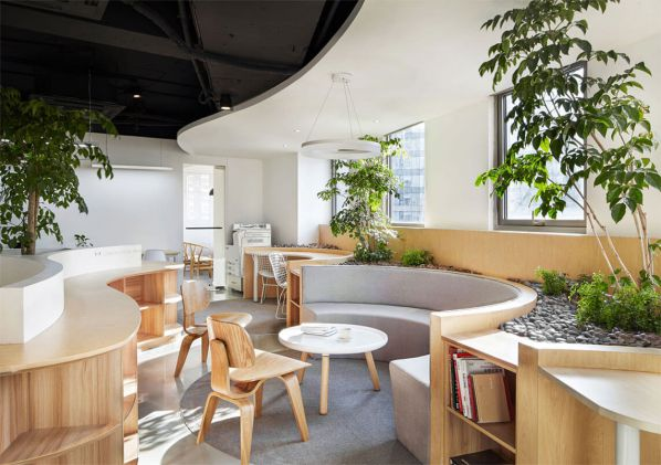 办公室装修的绿色工作花园